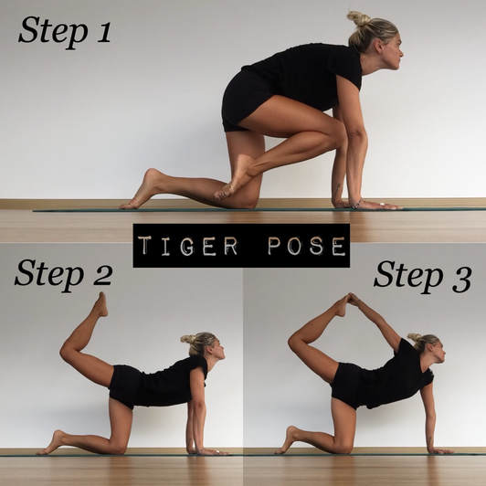 Tiger pose yoga